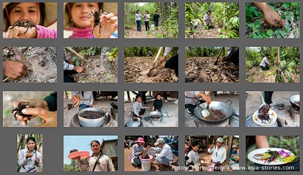 Kambodscha: Gegrillte und gefrittete Vogelspinnen in Skoun | Mario Weigt Photography