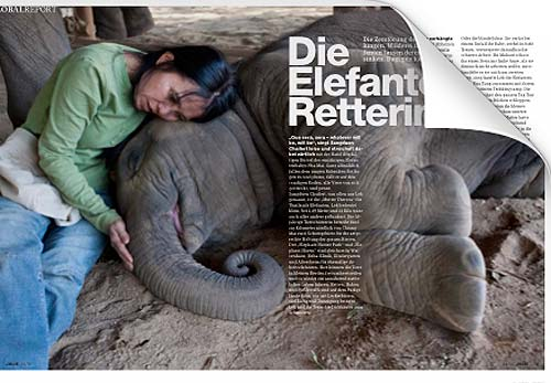 Reportage aus Thailand | Elefanten-Retterin Sangduen Lek Chailert im Elephant Nature Park | Text und Fotos: Annett & Mario Weigt