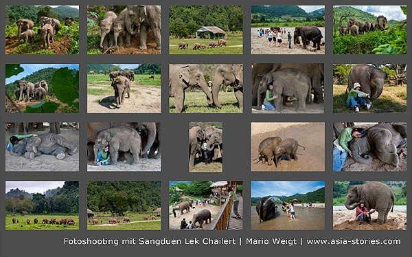 Fotoshooting mit Sangduen Lek Chailert im Elephant Nature Park in Thailand | Mario Weigt Photography