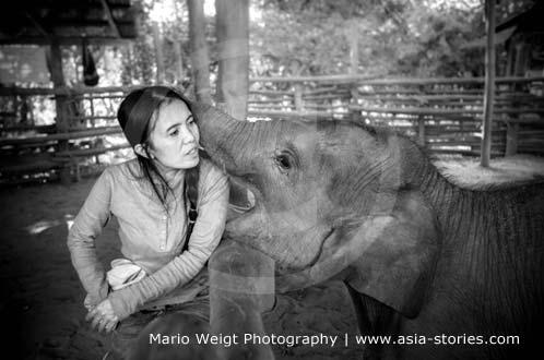 Thailand: Elefanten-Flüsterin Sangduen Lek Chailert spielt mit Elefant Faa Mai im Elefantenpark | Foto Mario Weigt