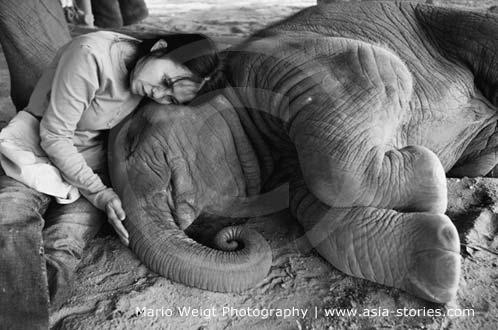 Sangduen Lek Chailert im Elephant Nature Park (Elefantenpark) in Thailand | Mario Weigt Photography