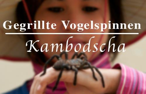 Gegrillt und Gefrittet: scharze Vogelspinnen in Kambodscha im Dorf Skoun
