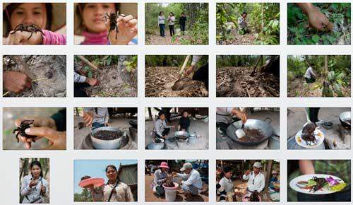 Reportage: Gegrillte Vogelspinnen im Dorf Skoun in Kambodscha | Fotos: Mario Weigt