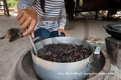 Reportage: Zubereitung und Rezept für gegrillte oder gefrittete Vogelspinnen im Dorf Skoun in Kambodscha | Foto: Mario Weigt