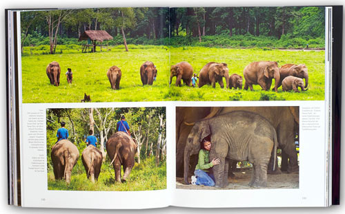 Thailand, Chiang Mai, Elephant Nature Park mit Sangduen Lek Chailert: Premium Bildband Südostasien mit Myanmar (Burma), Thailand, Vietnam, Laos und Kambodscha | Fotos Mario Weigt | Text Walter M. Weiss | Verlagshaus Würzburg/Stürtz