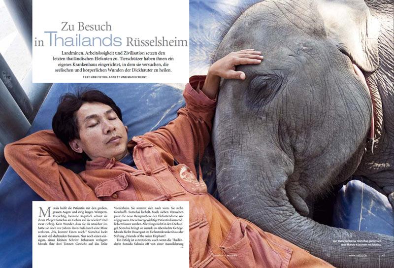Veröffentlichung im Magazin Natur | Artikel: Zu Besuch in Thailands Rüsselheim | Text und Fotos: Annett und Mario Weigt