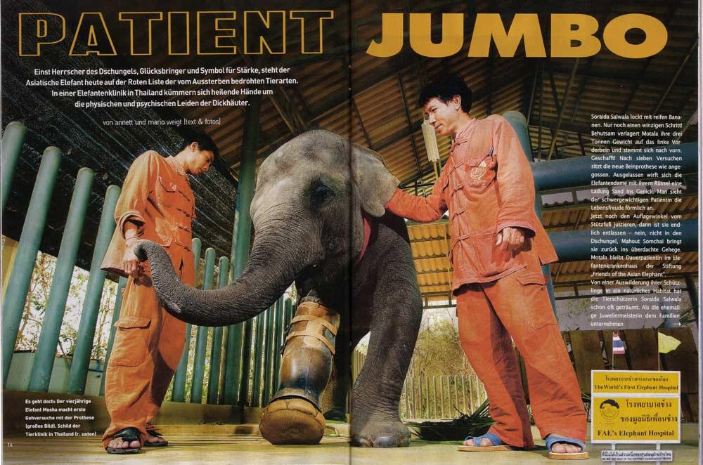 Veröffentlichung im Magazin Kurier | Artikel: Thailand - Patient Jumbo | Text und Fotos: Annett und Mario Weigt