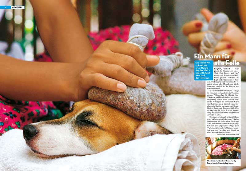 Veröffentlichung im Magazin VIEW von Stern | Artikel: Ein Mann für alle Felle - Indo Thai Dog Spa in Thailand | Fotos: Mario Weigt