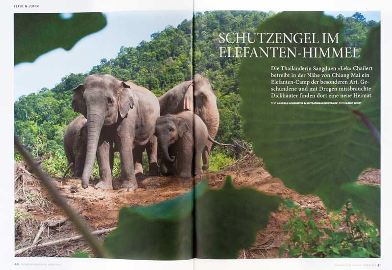 Veröffentlichung im Magazin Women in Business | Elephant Nature Park in Thailand: Schutzengel im Elefanten-Himmel | Foto: Mario Weigt