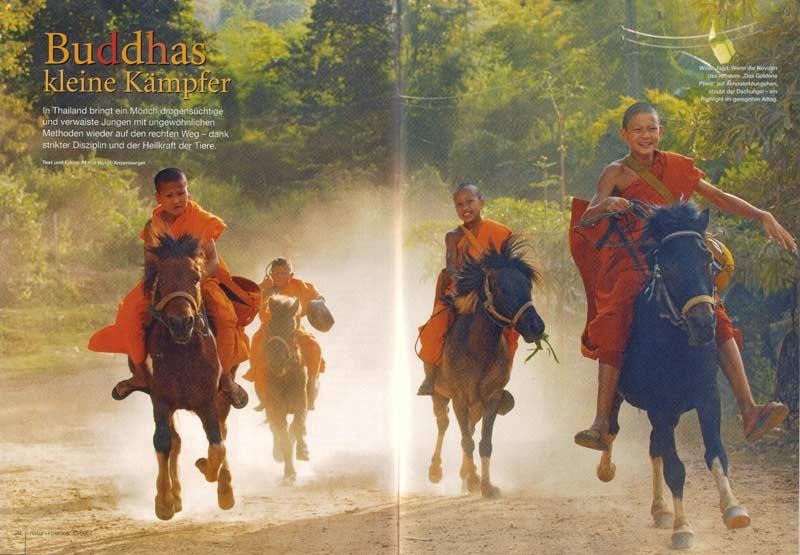 Veröffentlichung im Magazin Natur | Artikel: Buddhas kleine Kämpfer im