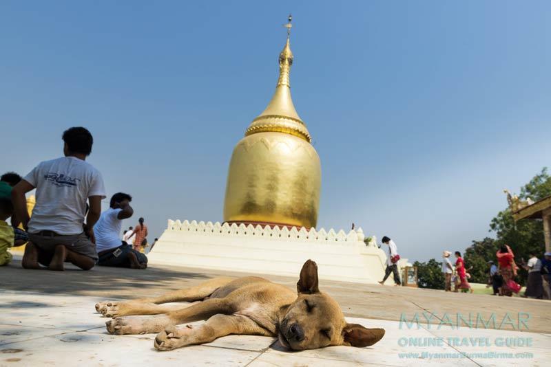 Myanmar Reisetipps | Bagan | Bupaya-Pagode am Ayeyarwady