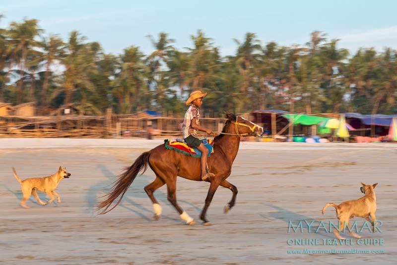Myanmar Reisetipps | Tollwut | Hunde am Ngwe Saung Beach