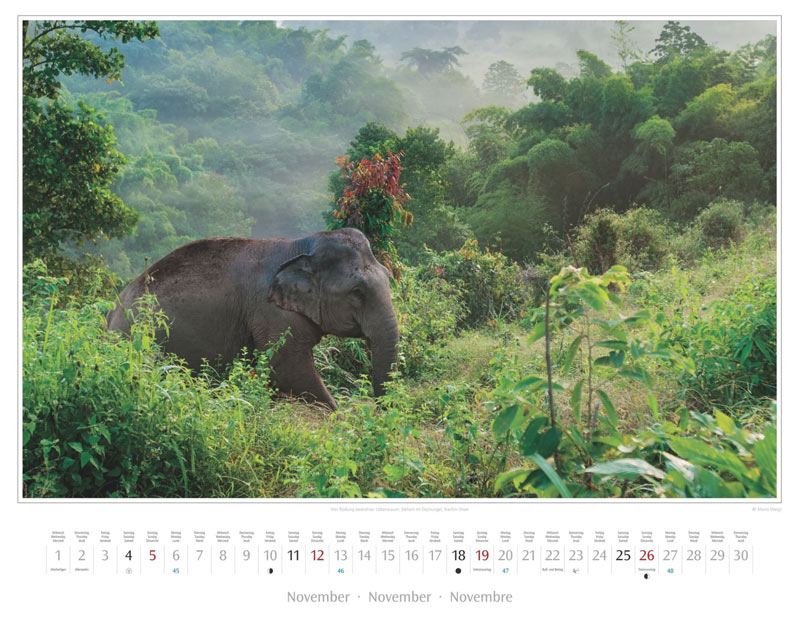 Monat November vom Wandkalender 2017 Myanmar | Burma