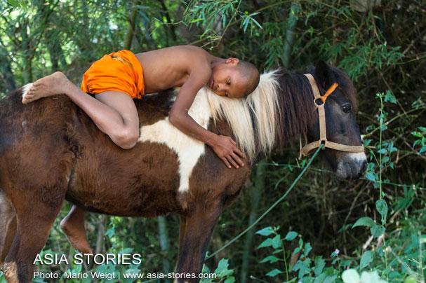 """Thailand: Kloster """"Das goldene Pferd"""" im Goldenen Dreieck"""