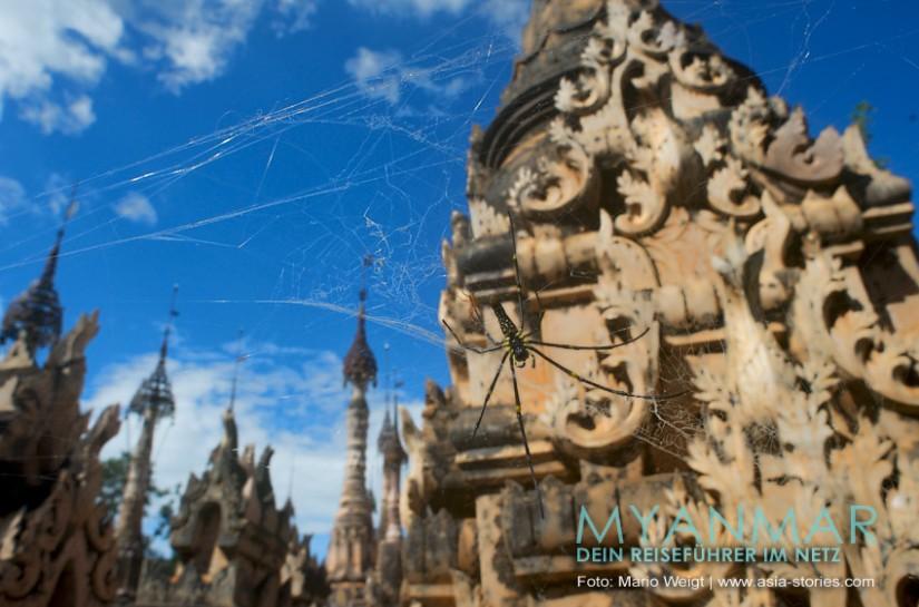 Myanmar Reisetipps - Kakku im Spinnennetz