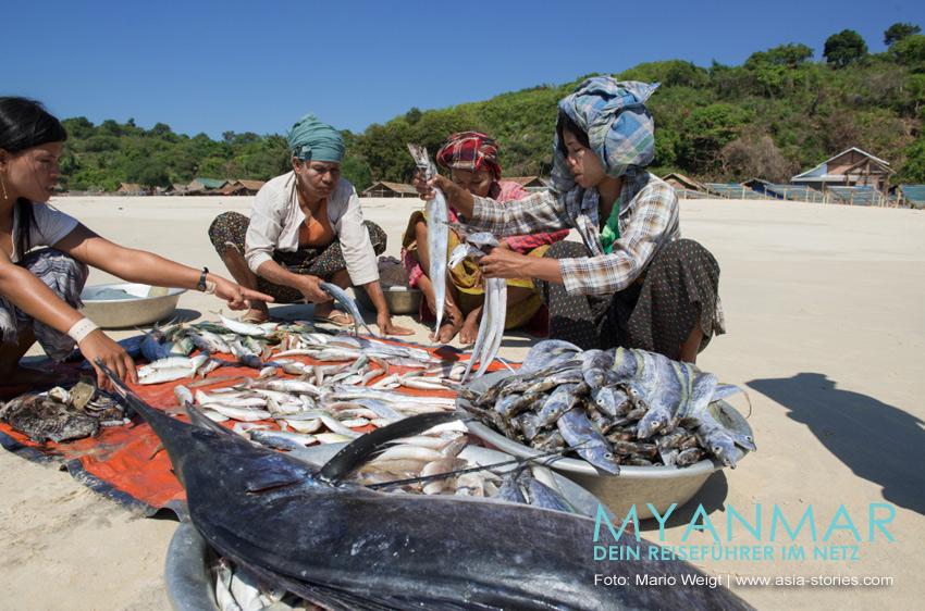 Myanmar Reisetipps - Dawei und die Strände | Marktfrauen mit frischem Fisch im Dorf Paw La Mor, nahe dem Strand Tizit