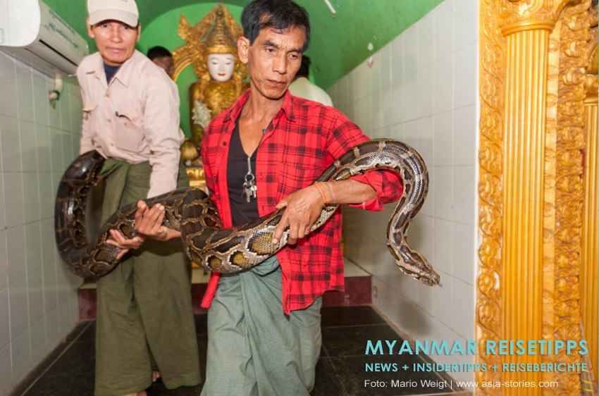 Myanmar Reisetipps | Umgebung von Mandalay | Schlangentempel Paleik