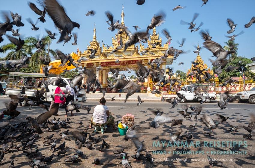 Myanmar Reisetipps | Yangon | Nahe der Shwedagon-Pagode