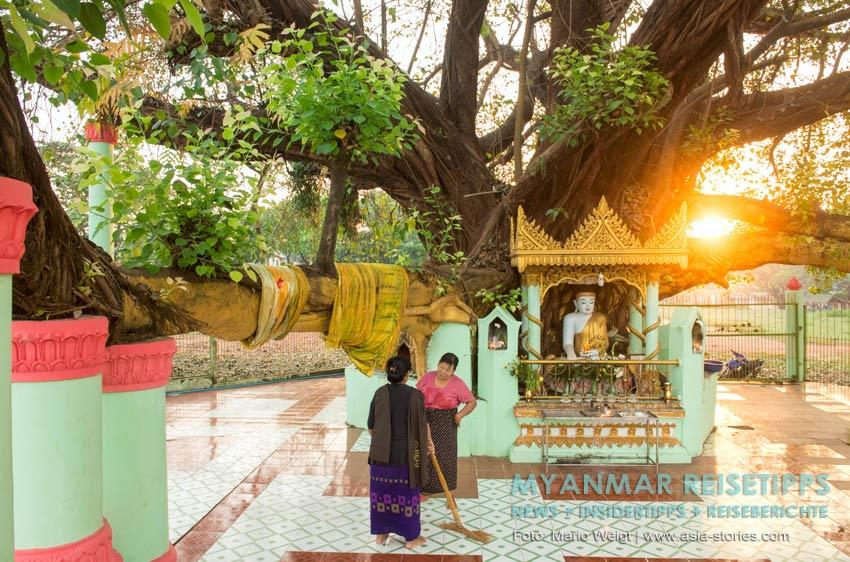 Myanmar Reisetipps | Stadt Ye und die Umgebung | Shwesandaw Pagode kurz nach Sonnrnaufgang