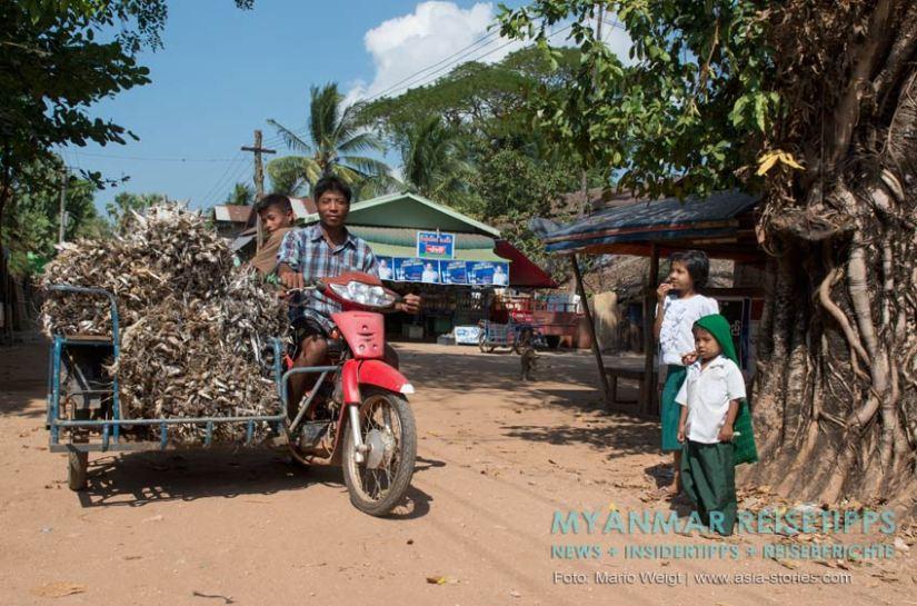 Myanmar Reisetipps | Stadt Ye und die Umgebung | Fischtrocknung am Strand