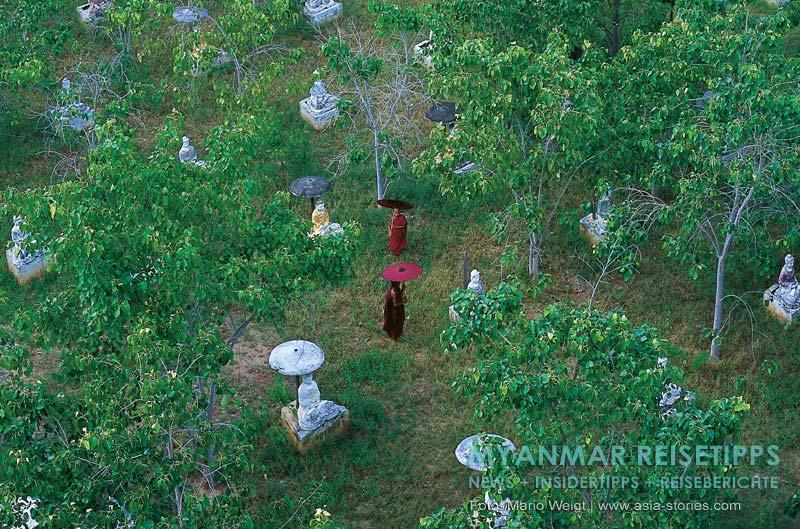 Myanmar Reisetipps | bei Monywa | Feld der 1000 Buddhas