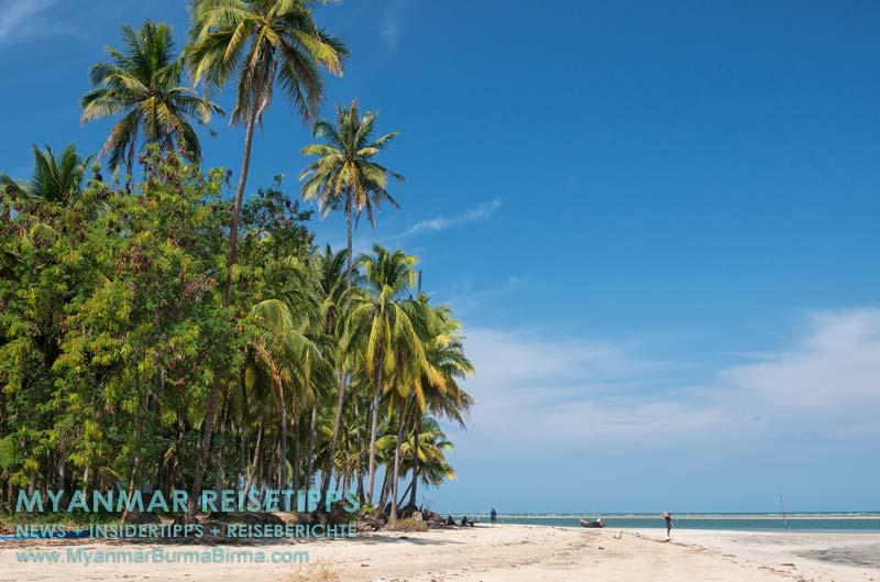 Myanmar Reisetipps | Ngwe Saung Beach (Silberstrand) | Kokospalmen zwischen Ngwe Saung und Sinma