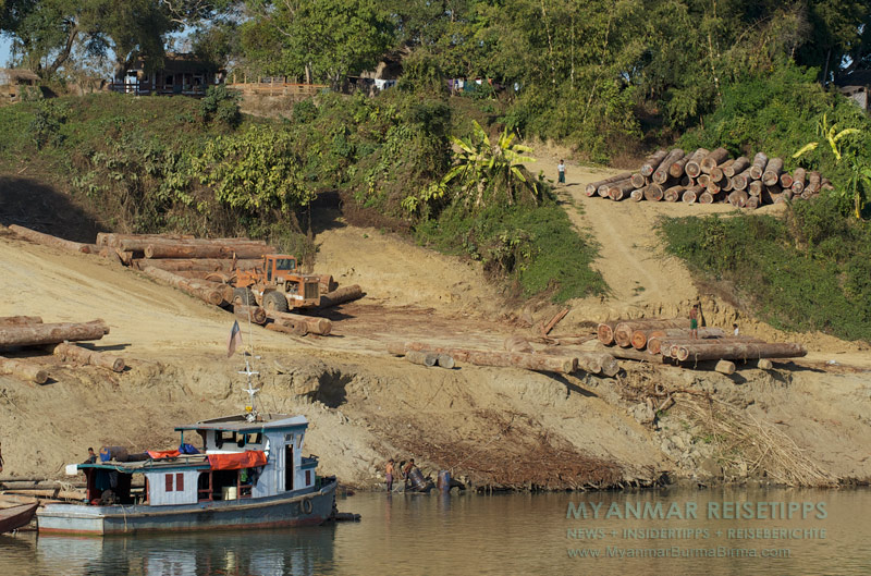 Myanmar Reisetipps | Flussfahrt Bhamo nach Mandalay | Holzlager am Ufer des Ayeyarwady