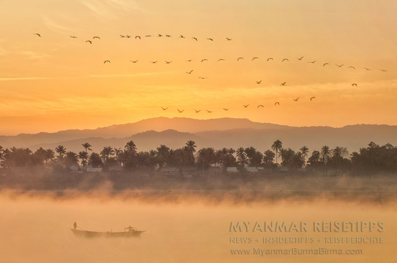 Myanmar Reisetipps | Flussfahrt Bhamo nach Mandalay | Kraniche kurz vor Sonnenaufgang
