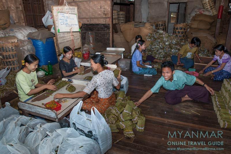 Myanmar Reisetipps | Bago | Besuch einer Cherootmanufaktur
