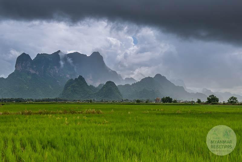 Myanmar Reisetipps | Hpa-an | Reisfelder vor dem Mt. Zwekabin