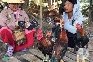Myanmar Reisetipps | Loikaw | Markt in Demoso