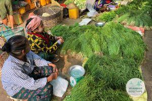 Myanmar Reisetipps | Loikaw | Marktstand mit Lauchzwiebeln