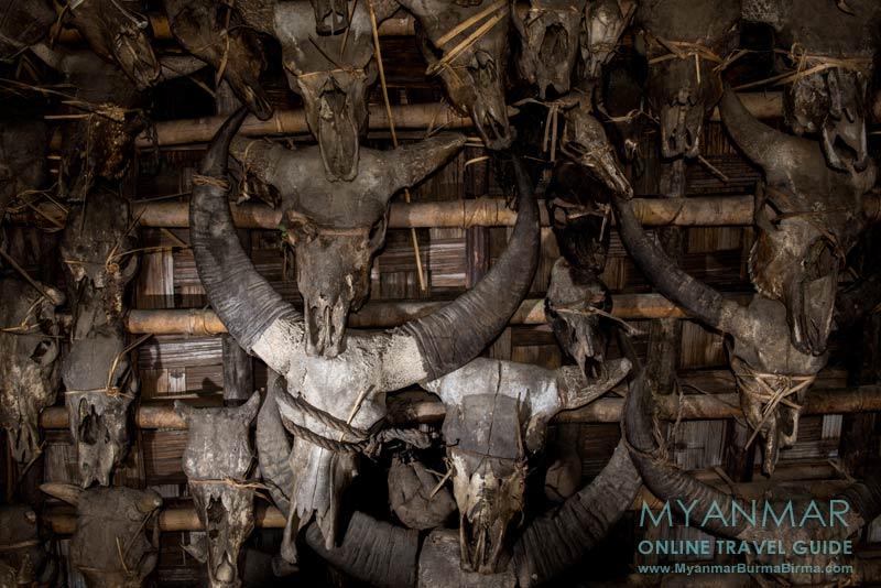 Myanmar Reisetipps   Mindat   Tierschädel an der Hauswand in Loute Pe