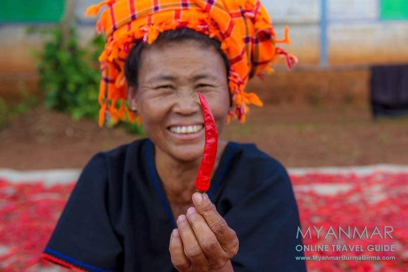 Myanmar: Zwischen Kalaw und Loikaw wird Chili getrocknet.