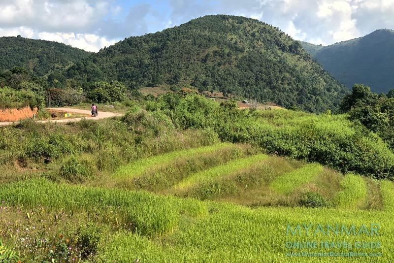 Myanmar Reisetipps | Umgebung von Kalaw | Straße nach Kalaw