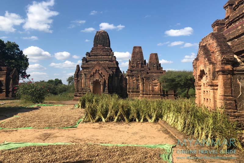 Myanmar Reisetipps | Sale | Alte Zedis aus der Bagan-Zeit