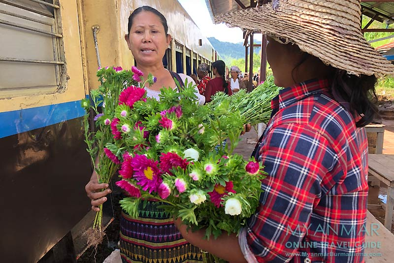 Myanmar Reisetipps | Bahnfahrt von Thazi nach Kalaw: Bahnhof in Myin Daik
