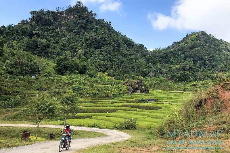 Myanmar Reisetipps | Pinlaung | Reisterrassen und Straße zur Lone-Naga-Pat-Pagode